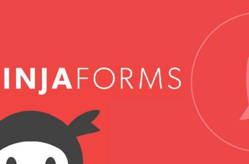 Отслеживание целей Метрики в Ninja Forms