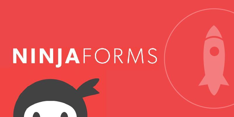Добавляем отслеживание целей Метрики в Ninja Forms