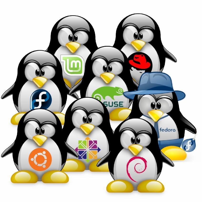 Все семейства с ядром Linux 5.0