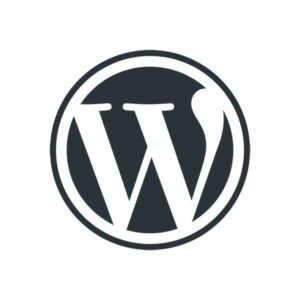 Асинхронная и отложенная загрузка js в WordPress 1