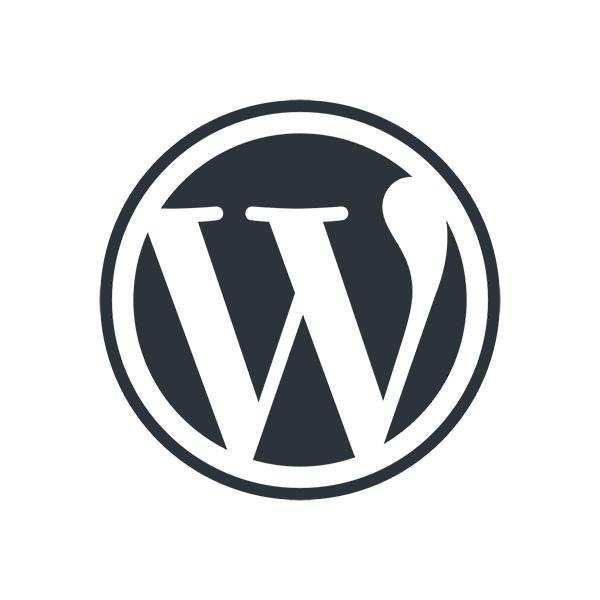 Асинхронная и отложенная загрузка js в WordPress