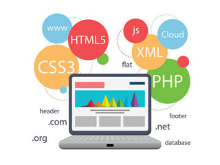 Перспективы веб-разработчика