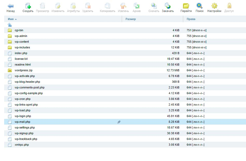 Файловая система WP на хостинге