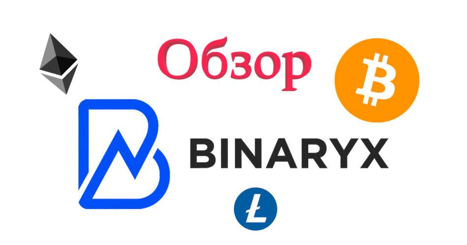 Обзор Binaryx